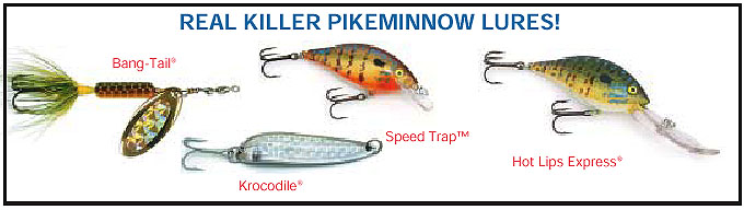 fish tips article #11 northern pikeminnow, Fly Fishing Bait